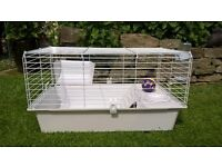 Indoor Rabbit/Guinea Pig Cage