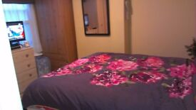 Nice double room in quiet and clean house for girl only close to the station.