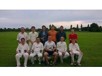 Cricket Players wanted. Friendly Social Sunday Side