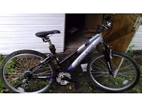 Ladies Mountain Bike, 6 gears, Slight rust but perfect working condition
