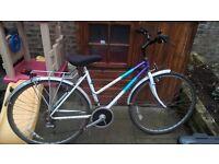 Ladies Raleigh Hybrid Bicycle Bike FREE Lights Highbrid