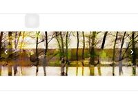 (9) Marmont Hill Lake Trees Art Print Wrapped on Canvas by Parvez TajParvez taj