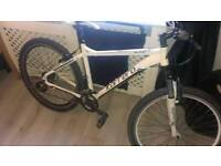 Adults carrera mountain bike