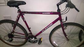 Claud Butler Classic Bike