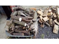 Fire Wood for wood burners or stoves. Pre cut