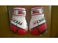 RDX Boxing Gloves Punch Bag Training