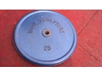 "50kg Cast Iron Weight Plates STD 1"" Hole 2 x 25kg"