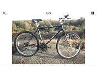 Tioli T26 Mans Bike