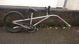 Tag a Long Bike