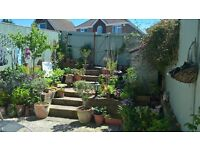 Houseshare offered in lovely location 15 minutes from central Brighton.