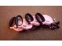 Pink dog retractable lead.