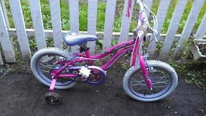 Vélo schwinn 16 pouces avec petite roue