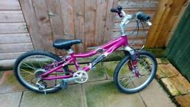 Girls Gary Fisher mountain bike