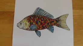 Hippy Fishy! Unlimited Edition Print. Lovely fish, multicoloured,hippy,dippy,fishy!