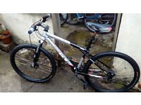 GT Avalanche 1.0 - CrossCountry Mountainbike - Frame size S- Fully Serviced