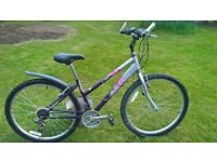 "Raleigh 15"" Mountain Bicycle"