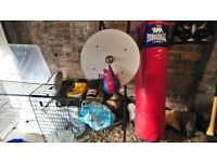 Boxing punch bag/ speed ball/one set of boxing gloves