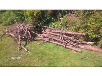 Free logs for wood burning stoves etc