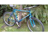 peugeot energy 100 21 speed 22 in frame,fully adjustable seatpost,superb bike