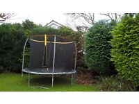 FREE 9ft. Trampoline with protective cage, Whoever wants it has to dismantle.
