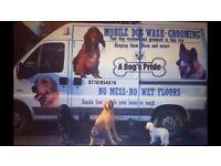 £5000 Dog Grooming Van Fully Converted 12 month MOT