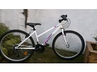 *REDUCED* bargain at £70! Brand new ladies bike for sale.