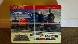 Hornby Devon flyer