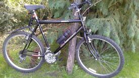 bsa westcoast 22 in frame gents cycle,mudguard,runs beautifully