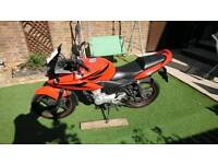 Honda cbf 125 (not Dylan, ses, ps, sh, cbr)