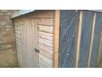 10ft x 5ft dog pen with run