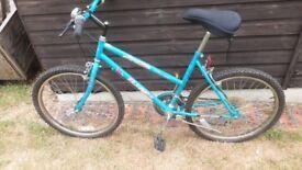 Ladies 23inch wheel bicycle