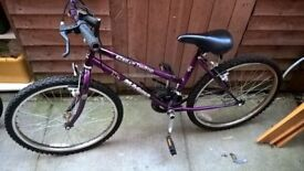 Gilrs bike (£20)