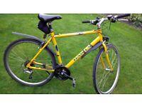 Hybrid Bike Dawes.