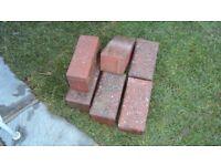 Bricks for pathway or drive and roll of insulation