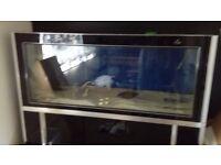 6.5ft 850 litre Aquarium