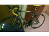 Carrera mens road bike for sale