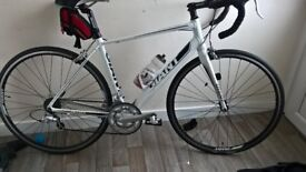 giant defy medium