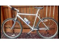 Marin Nail Trail All Highly Polished Aluminium Mountain Bike.
