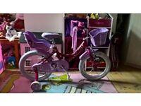 Raleigh Baby Girl's Molli 16 inch Bike - Pink