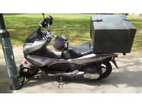 Looking for a loyal motor scooter?