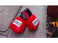 Everlast 12 oz red sparring gloves (unused, excellent condition)