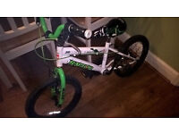 boys childs Bike 3 to 6 years Raptor good con free stabilize super cool