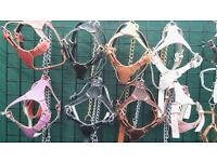 Job lot genuine leather dog harnesses, all sizes various colours any questions phone 07459425264 .