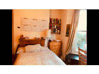 Large double room in friendly house share (short term with potential for permanent let)