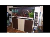 4ft Fluval Roma 240 marine tropical cold water fish tank with setup