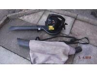 Petrol leaf blower and vac.