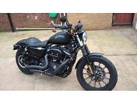 Harley Davidson 883 iron xl