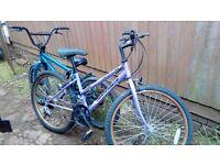 2 childrens pedal bikes