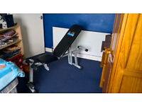 Carl Lewis Fitness Bench