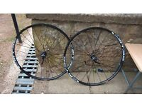 "29"" mountain bike wheels,carrera giant,specialized"